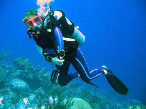 Hobby_diver